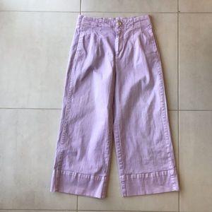 Anthropologie Pilcro Letterpress Culotte Jeans